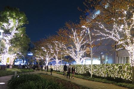2015年東京ミッドタウンクリスマスイルミネーション ツリーイルミネーション