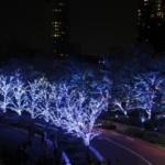 2015年東京ミッドタウンのイルミネーションの概要・混雑具合