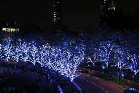 2015年東京ミッドタウンクリスマスイルミネーション スターライトロード