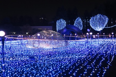 2015年東京ミッドタウンクリスマスイルミネーション スターライトガーデン