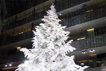 KITTE 2015年12月のホワイトツリー