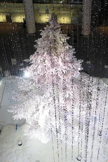 kitte_white_tree_201512_04